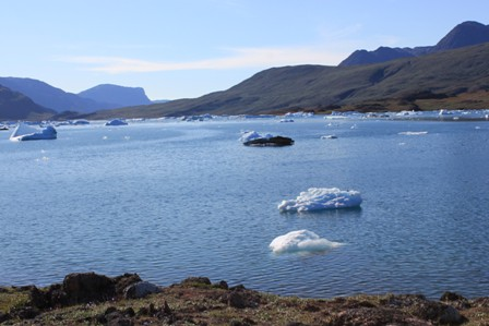 Small icebergs on Sermilik Fjord, near Tasiusaq